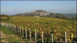 Sancerre, une commune bien connue des amateurs de vins est située en région Centre. Quel est son département ?
