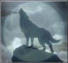 Durant les nuits de pleine lune, ils passent de la forme humaine à la forme animale et en tirent leur force. De qui parlons-nous ?