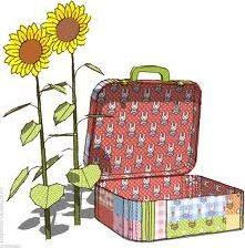 Les bagages dans les expressions imagées