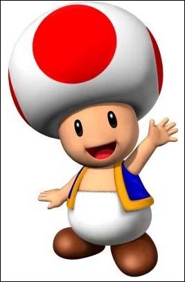 Qui est ce petit champignon ?