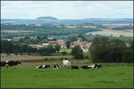 La visite de la Meurthe-et-Moselle se termine avec le village de Vaudigny et ses habitants répondant au nom de ...
