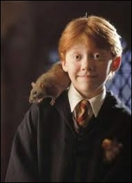 Qui se cache sous l'apparence de Croûtard, le rat de Ron ?