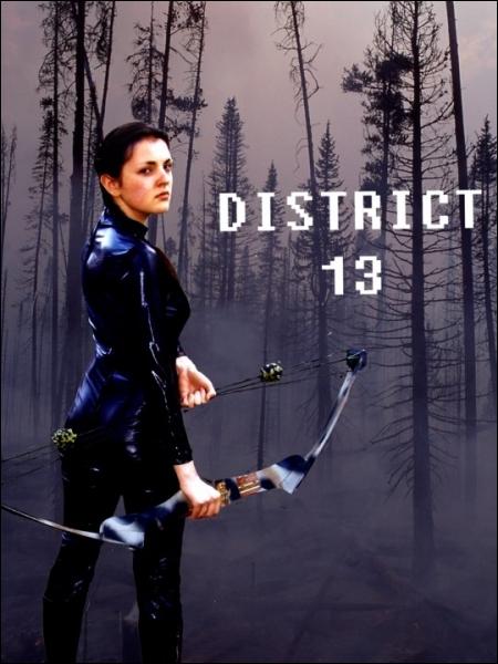 Mais... qu'est devenu le District 13 ? (livre 2 et 3 )