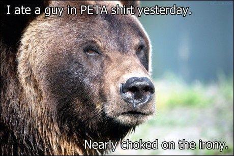 L'ours polaire peut s'hybrider avec ...