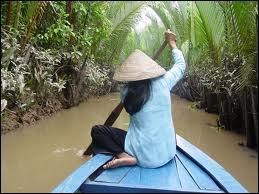 Dans quel pays se trouve le delta du Mékong ?
