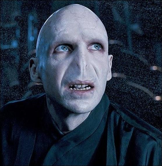 Que cherche Voldemort dans HP1 ?