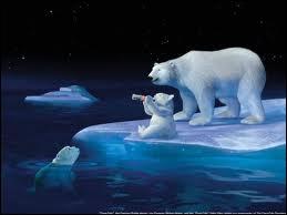 Pour quelle marque ces ours polaires font-ils de la pub ?