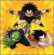Sangoku s'est battu contre son frère Raditz avec l'aide de Piccolo. Quelle était l'issue du combat ?