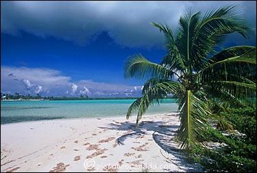 Quelles îles ne se situent pas dans l'océan Pacifique ?