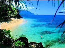 Quelles îles se sont appelées les îles ''Sandwich'' ?