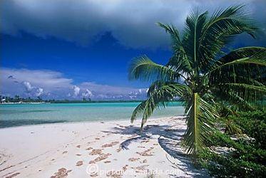 Îles du Pacifique