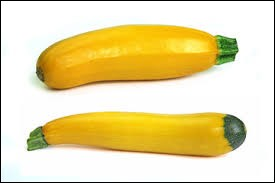 Ces courgettes sont-elles réelles ou résultent-elles d'un photo-montage entre peau de banane et cicatrice d'insertion des pièces florales !?