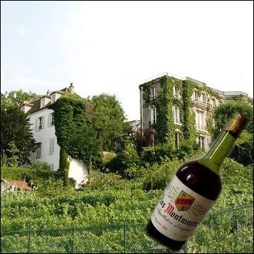 Sur la butte Montmartre à Paris, subsiste une vigne produisant bon an mal an environ 1700 bouteilles de 50 cl. Quel est le caractère particulier de ce vignoble parisien ?