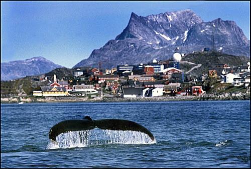 Territoire danois, le Groenland a obtenu l'autonomie en 1979. La capitale s'appelait Godthâb. Les indigènes l'ont rebaptisée...