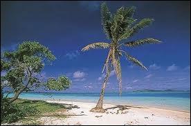 Dans le Pacifique se trouve l'île de Niue qui a pour capitale...