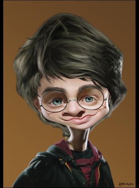 Quelle famille a recueilli Harry Potter, après la mort de ses parents ?