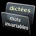 Parmi ces mots, lequel est un mot invariable ?