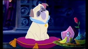 A quelle race appartient Percy, le chien de Ratcliffe dans le film  Pocahontas  ?