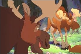 Dans le film d'animation  Frère des Ours , quels humoristes prêtent leur voix aux personnages Truc et Muche dans la version française ?