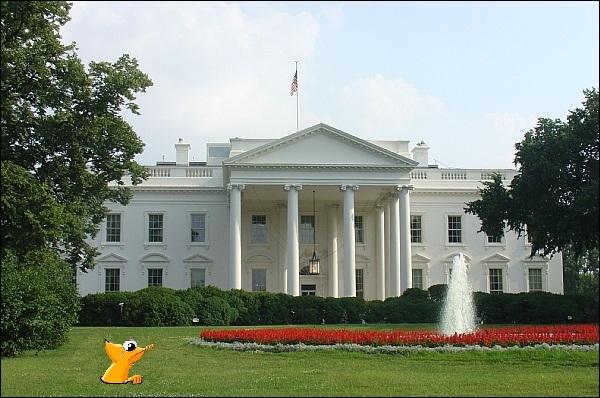 Oups ! notre mascotte touriste va se faire sévèrement remonter les bretelles par Barack car il est interdit de creuser dans le jardin de la Maison Blanche... Mais où est donc le caméléon ?