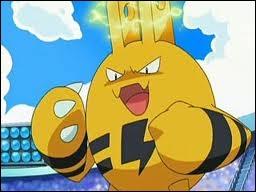 Elékid est un Pokémon de type...