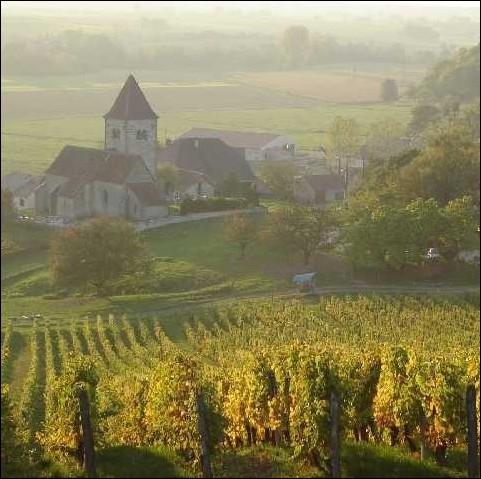 Laquelle de ces appellations n'est pas un vin issu des vignobles Francs-Comtois ?