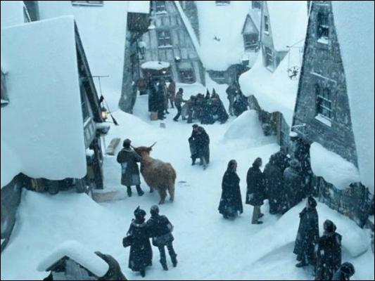 """Dans """"Harry Potter et l'Ordre du phénix"""", où Hermione donne-t-elle rendez-vous à Harry, Ron et aux autres élèves pour trouver un nouveau professeur contre les forces du Mal ?"""