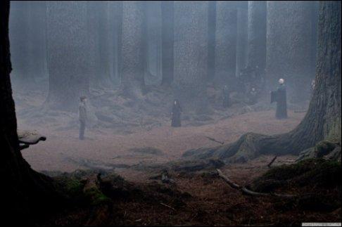 """Dans """"Harry Potter et les Reliques de la mort"""", grâce à quoi Harry Potter ne meurt-il pas dans la Forêt interdite ?"""
