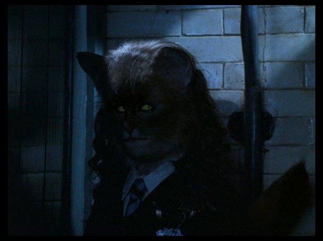 """Dans """"Harry Potter et la Chambre des secrets"""", Hermione boit du Polynectar mais se transforme en chat ! À qui appartenait le chat ?"""