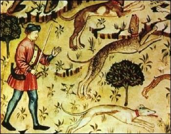 Regardez bien le parchemin. Les bois regorgeaient de gibier et la chasse était une pratique réservée aux seigneurs. Ils chassaient les cervidés, les sangliers, avec de magnifiques chiens, des :