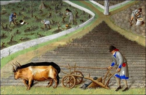 Le travail était harassant au Moyen Âge et constituait le lot des 3/4 de la population. Trois activités sont exposées sur ce parchemin enluminé.