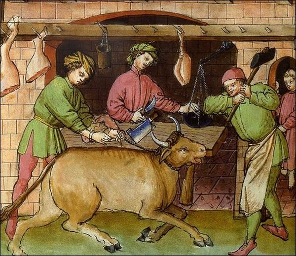 Bien sûr, il existait des bouchers au Moyen Âge mais, les bovins étaient tués alors qu'ils avaient rendu de nombreuses années de labeur ou plutôt, de :