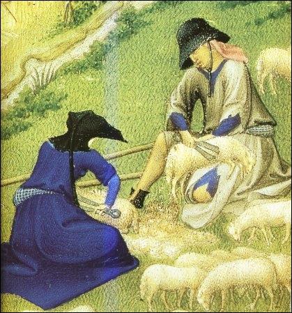 Pattes liées, le mouton est déposé sur une toile pour ne pas perdre un seul flocon de la toison. Le commerce de la laine fut un des plus prospères et ... ... . , le principal pays exportateur.