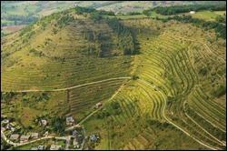 Afin de faire glisser comme il se doit tous ces mets savoureux, les membres de la confrérie ont sélectionné un vin tranquille du plus grand vignoble de l'Aveyron.