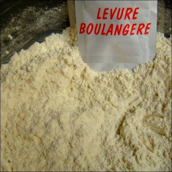 La levure s'emploie pour diverses fabrications. Retrouvez la bonne liste pour laquelle elle entre dans toutes les préparations.