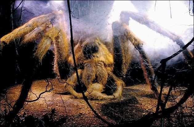 Qui sauve Harry et Ron des araignées de la Forêt interdite ?