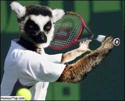 Joueur de tennis suisse qui a gagné cinq fois de suite deux tournois du Grand Chelem (le tournoi de Wimbledon et l'US Open).
