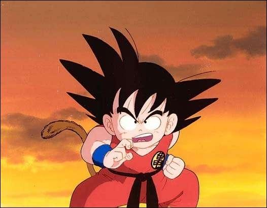 Qui est le personnage principal de  Dragon Ball  ?