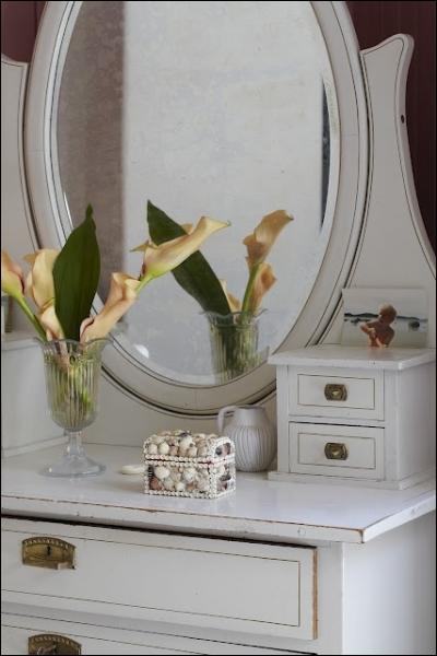 Mises en valeur par les meubles blancs lumineux et le miroir dans lequel le bouquet se reflète, ces fleurs si délicatement orangées sont des... ?