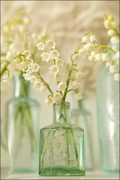 Voici un gros plan sur une fleur petite mais merveilleusement parfumée, ici dans un vase rustique, et présentée sans ses feuilles. C'est... ?