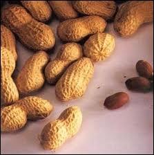 La cacahuète est un légume ?