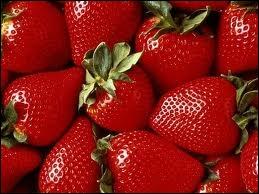 La fraise est le fruit du fraisier ?
