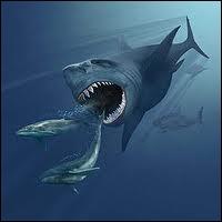 Quel animal disparu faisait 15m de long et pouvait manger un humain en une ou deux bouchées ?