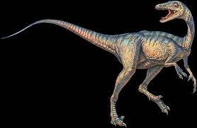 Quel est le plus intelligent des dinosaures ?