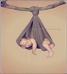Un repos mérité après une entrée dans la vie, mouvementée. Le bercement du ( ... ) prolonge la douceur de la vie utérine.