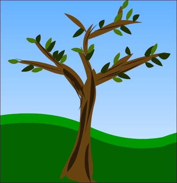 Combien cet arbre compte-t-il de feuilles, à votre avis ?