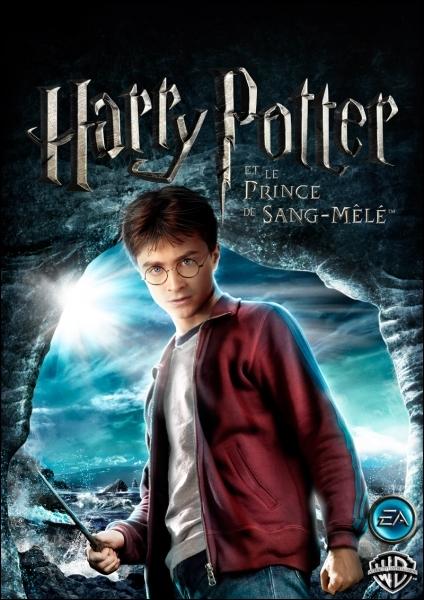 Dans  Harry Potter et le Prince de sang-mêlé , quel sorcier a pour surnom  Le Prince de sang-mêlé  ?