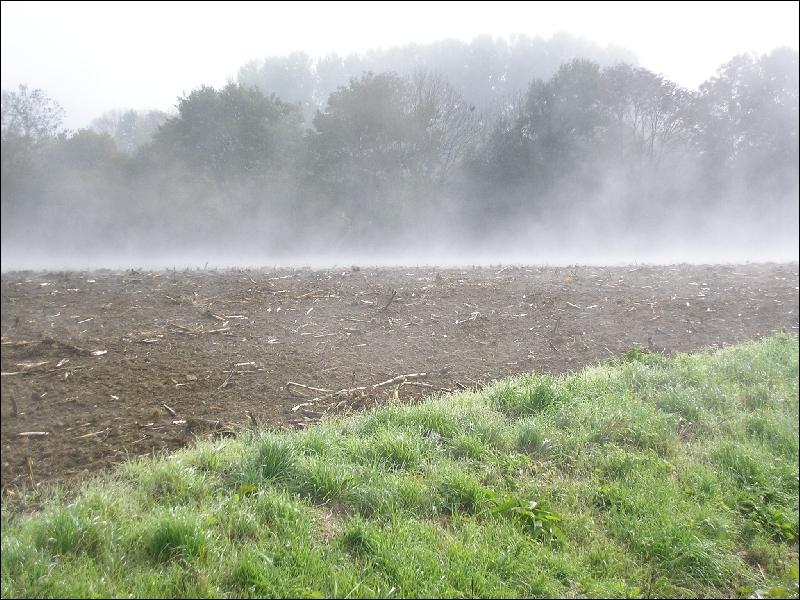 ---- roule ---- une vague de brouillard, tout cela est à nous jusqu'au soir.