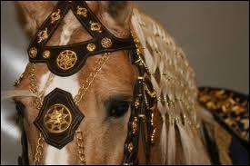 Quel est l'intrus entre ces chevaux lusitaniens célèbres ?