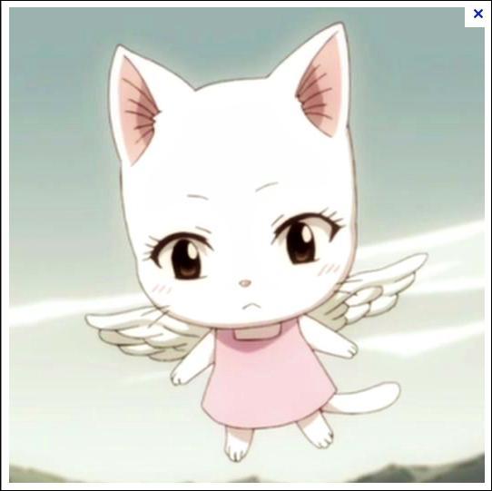 Comment s'appelle le chat de la fille du dragon ? (dans le dessin animé)